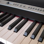 KORG Digital Piano SP-250