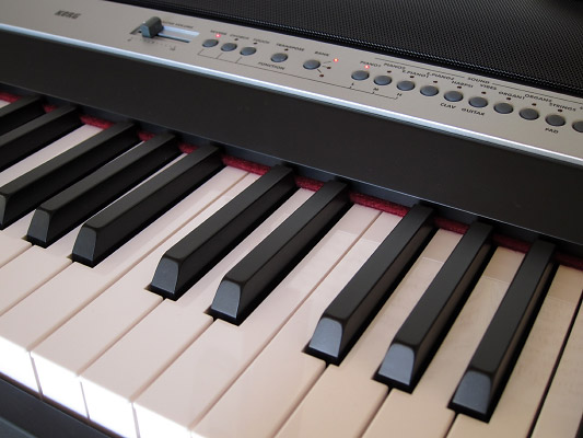 KORG Digital Piano SP-250